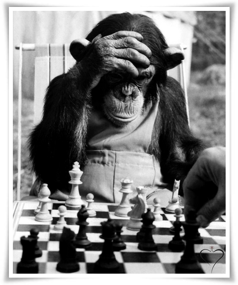 Monkey Chess