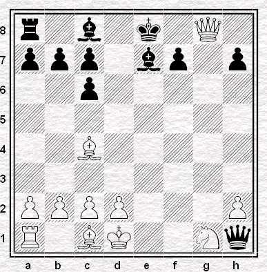 Posizione dopo 13.Dg8+