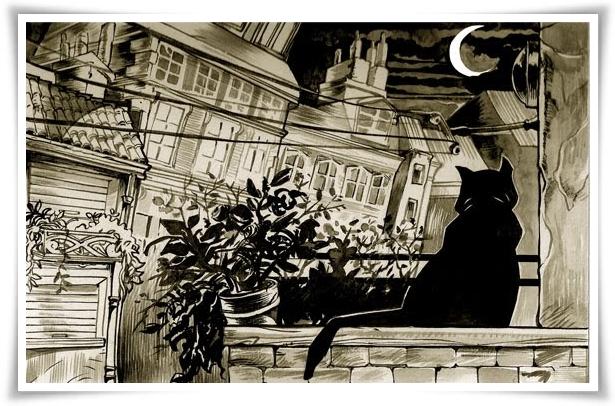 il gatto sul tetto 7