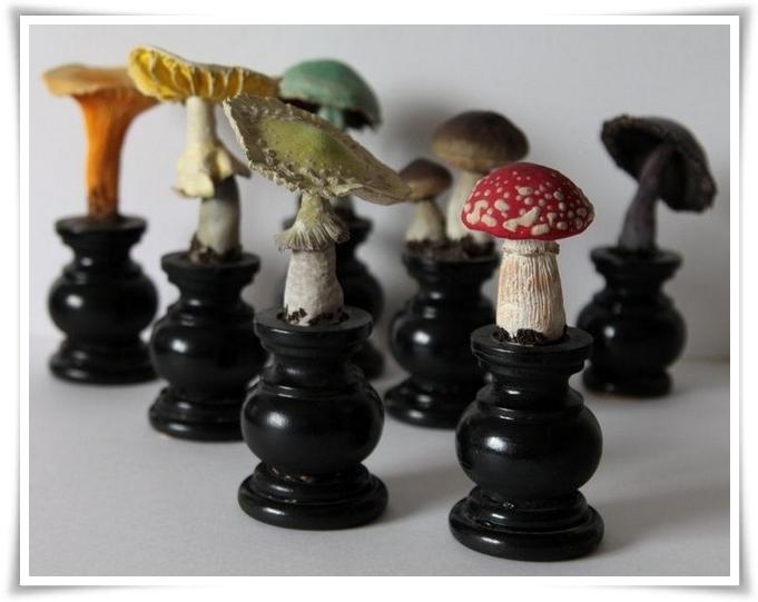 Micologia scacchistica 12