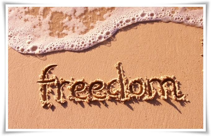 Freedom 06