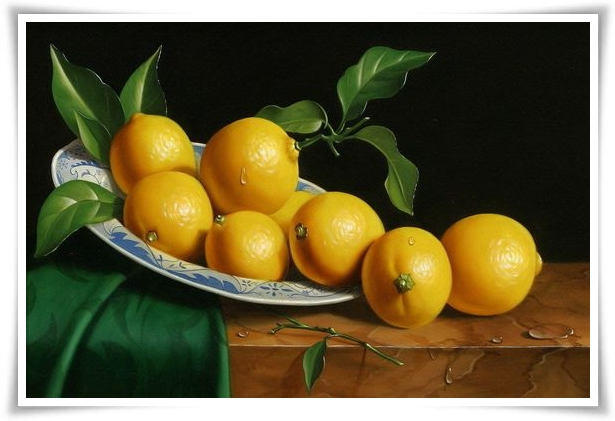 Lemon tree 03