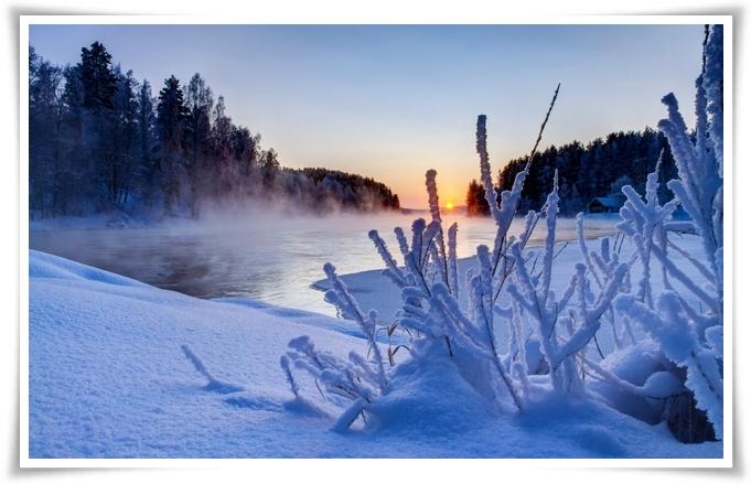 gemma-di-inverno-6