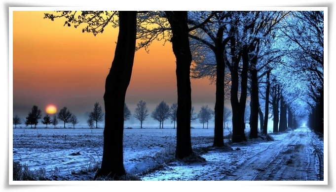 gemma-di-inverno-8